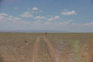 Running in Mongolian Desert